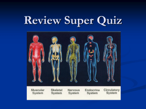 Review Super Quiz