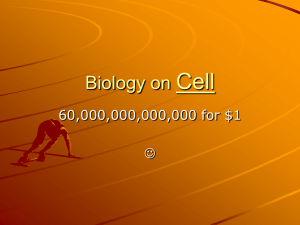 Biology on the Cell