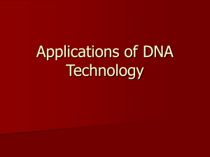 Topic 4 Applications of DNA