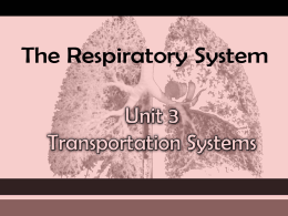 The RESPIRATORY System Unit 3 Transportation Systems