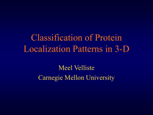 Classification of subcellular localization patterns in 3D - Meel Velliste