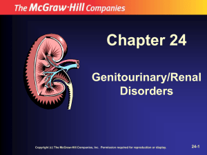 Chapter 24 Genitourinary/Renal Disorders 24-1