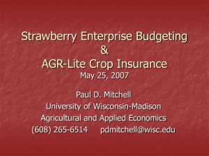 Strawberry Enterprise Budgeting (May 2007)
