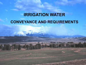 Irrigation Challenges and Solutions