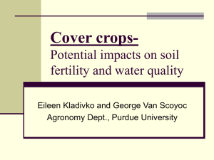 Cover Crops - Potential impacts on soil fertility and water quality