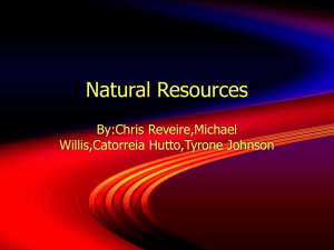 Natural Resources By:Chris Reveire,Michael Willis,Catorreia Hutto,Tyrone Johnson