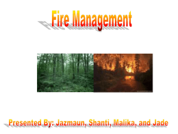 2 FireManagement-FACE-2007