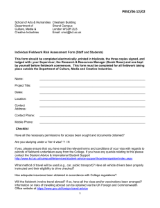 Fieldwork Risk Assessment Form