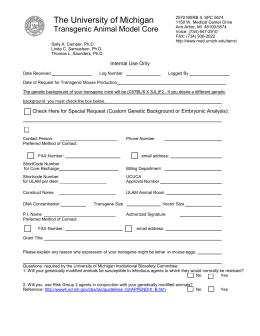 school application essay Fellowships and Scholarships   University of Michigan
