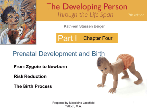 Part I Prenatal Development and Birth Chapter Four From Zygote to Newborn