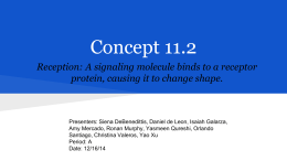 Concept 11.2 Reception: A signaling molecule binds to a receptor