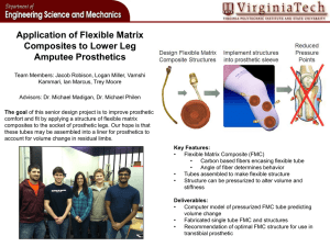 Application of Flexible Matrix Composites to Lower Leg Amputee Prosthetics