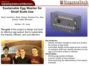 Sustainable Egg Washer for Small Scale Use The goal
