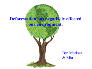 Deforestation has negatively effected our environment. By: Marissa & Mia