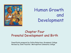 Human Growth and Development Chapter Four