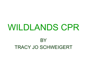 WILDLANDS CPR BY TRACY JO SCHWEIGERT