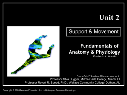 Unit 2 Support & Movement Fundamentals of Anatomy & Physiology