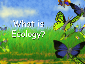 What is Ecology? 1