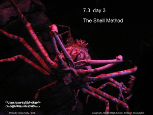 7.3  day 3 The Shell Method Japanese Spider Crab