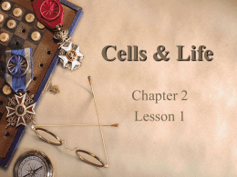 Cells & Life Chapter 2 Lesson 1