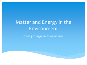 Matter and Energy in the Environment C20L3 Energy in Ecosystems