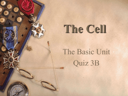 The Cell The Basic Unit Quiz 3B