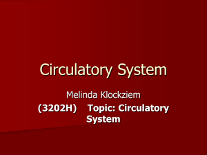 Circulatory System Melinda Klockziem (3202H) Topic: Circulatory System