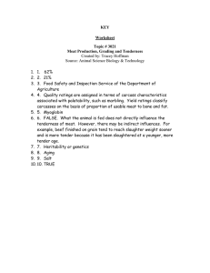 KEY Worksheet Topic # 3021 Meat Production, Grading and Tenderness