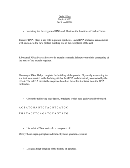 Section 12 3 Rna And Protein Synthesis Worksheet Answers : Section  Rna And Protein Synthesis With Quiz  Key Topic   Dna And Rna From Studylib.net Photos