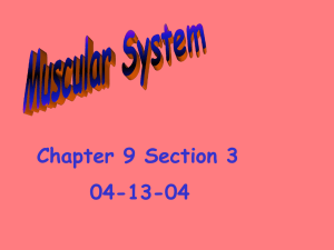 Chapter 9 Section 3 04-13-04