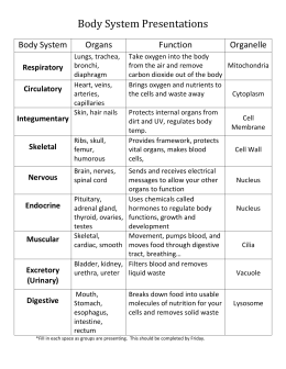 Worksheets Organ Systems Worksheet human body system worksheets sharebrowse systems sharebrowse