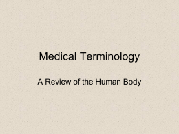 Medical Terminology A Review of the Human Body