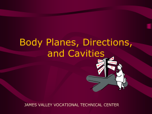 Body Planes, Directions, and Cavities JAMES VALLEY VOCATIONAL TECHNICAL CENTER