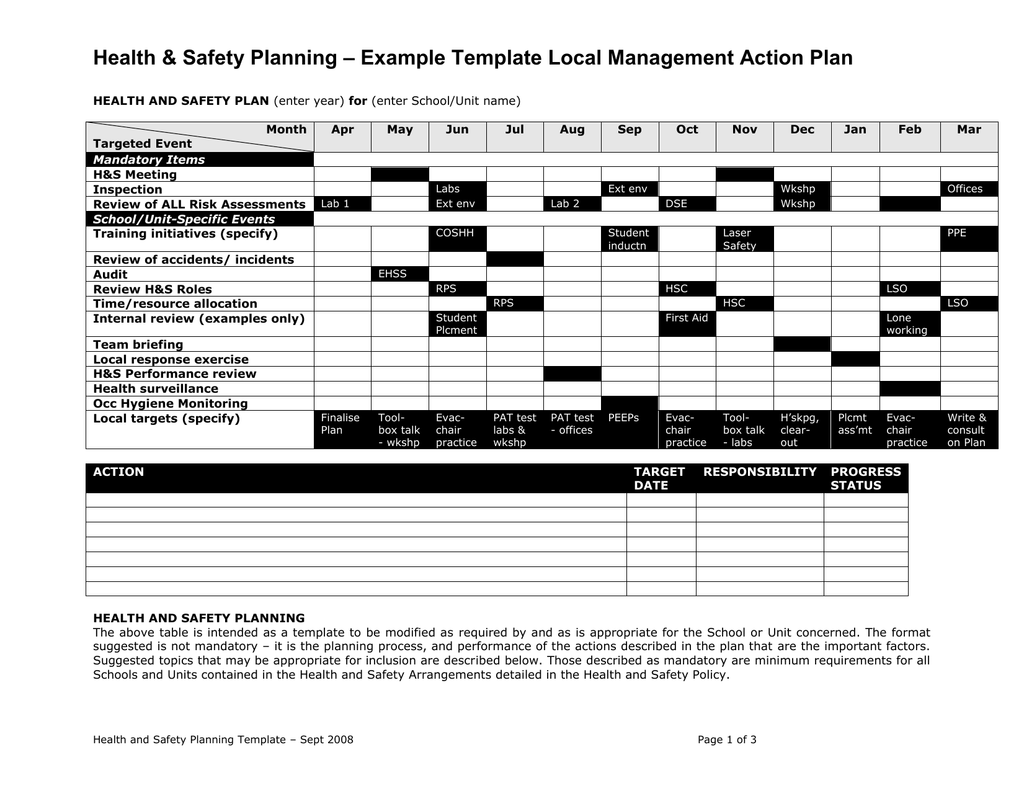 Example Template Local Management Action Plan Health & Safety ...