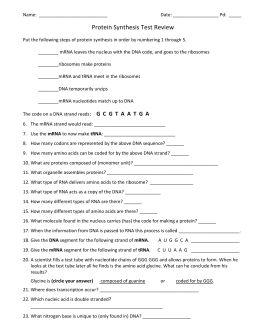 Protein Synthesis Worksheet Answer Key   ishtarairlines likewise  as well  besides Dna Coloring Worksheet Key Pretty Dna and Protein Synthesis Review further Protein Synthesis Review Worksheet Awesome  544427765199 – Protein besides Protein Synthesis Review Worksheet 23 Best Unique Transcription and together with Protein Synthesis Notes furthermore  furthermore Biology Protein Synthesis Review Worksheet Answer Key   Unboy org likewise  together with Dna And Protein Synthesis Worksheet Answers  167239633918 – Protein additionally protein synthesis review worksheet answers Method of say it with dna further Biology Protein Synthesis Review Worksheet Answer Key   Unboy org together with Protein Synthesis Review Worksheet 20 Luxury Protein Synthesis further Protein Synthesis Worksheet Answers Larry Flammer Review Free besides . on protein synthesis review worksheet answers