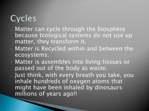 Matter can cycle through the biosphere matter, they transform it.