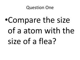 •Compare the size of a atom with the size of a flea?