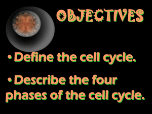 OBJECTIVES •Define the cell cycle. •Describe the four phases of the cell cycle.