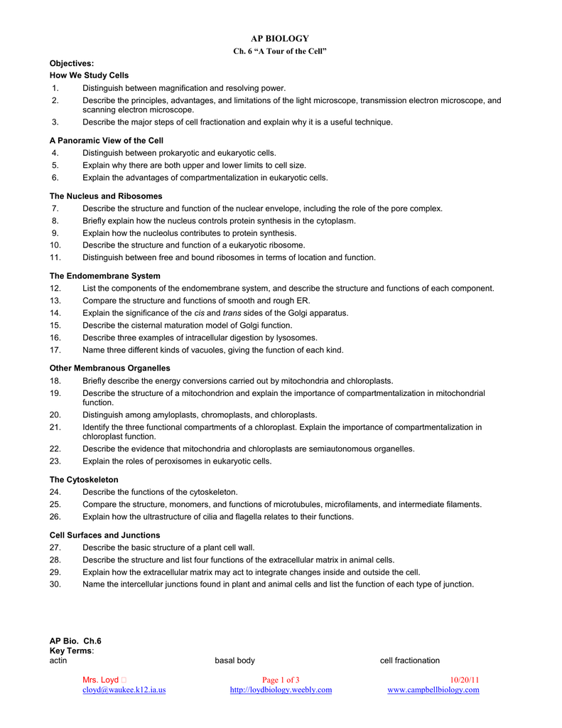 Cellular respiration worksheet high school biology