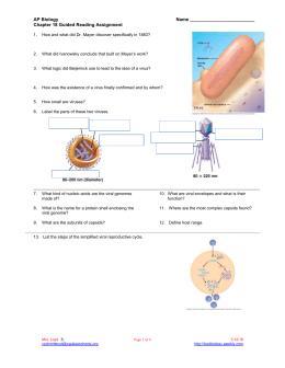 mitosis and meiosis   Google Search   School   Biology   Pinterest     Les Anciens de Saint Jo  AP BIOLOGY ESSAY QUESTIONS