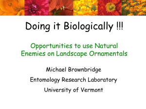 Doing it Biologically !!! Opportunities to use Natural Enemies on Landscape Ornamentals