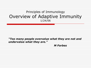 Overview of Adaptive Immunity Principles of Immunology 1/24/06