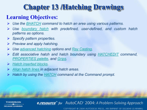 Chapter 13 /Hatching Drawings Learning Objectives: