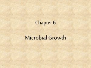 Microbial Growth Chapter 6 1
