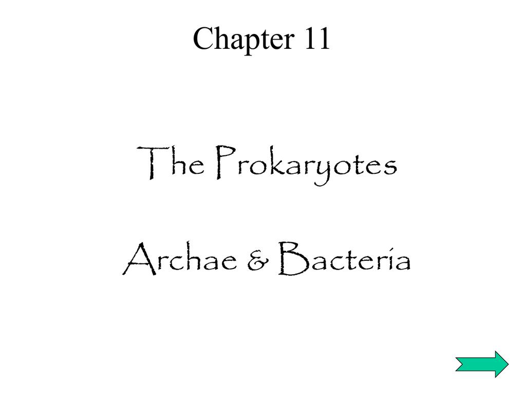 The Prokaryotes Archae & Bacteria Chapter 11