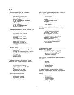 Gene Mapping Worksheet