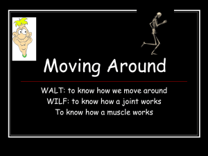 Moving Around WALT: to know how we move around