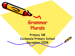 Grammar Plurals Primary 3M Cockenzie Primary School