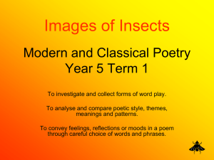 Images of Insects Modern and Classical Poetry Year 5 Term 1
