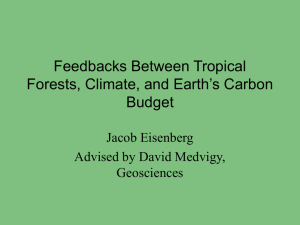 Feedbacks Between Tropical Forests, Climate, and Earth's Carbon Budget Jacob Eisenberg